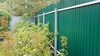 забор из дерева цвет зеленый